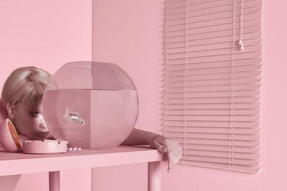 la-boite-d-allumettes-pink-rose-studio-carolina-mizrahi